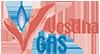 Vestina Gas | Gas e Luce Logo